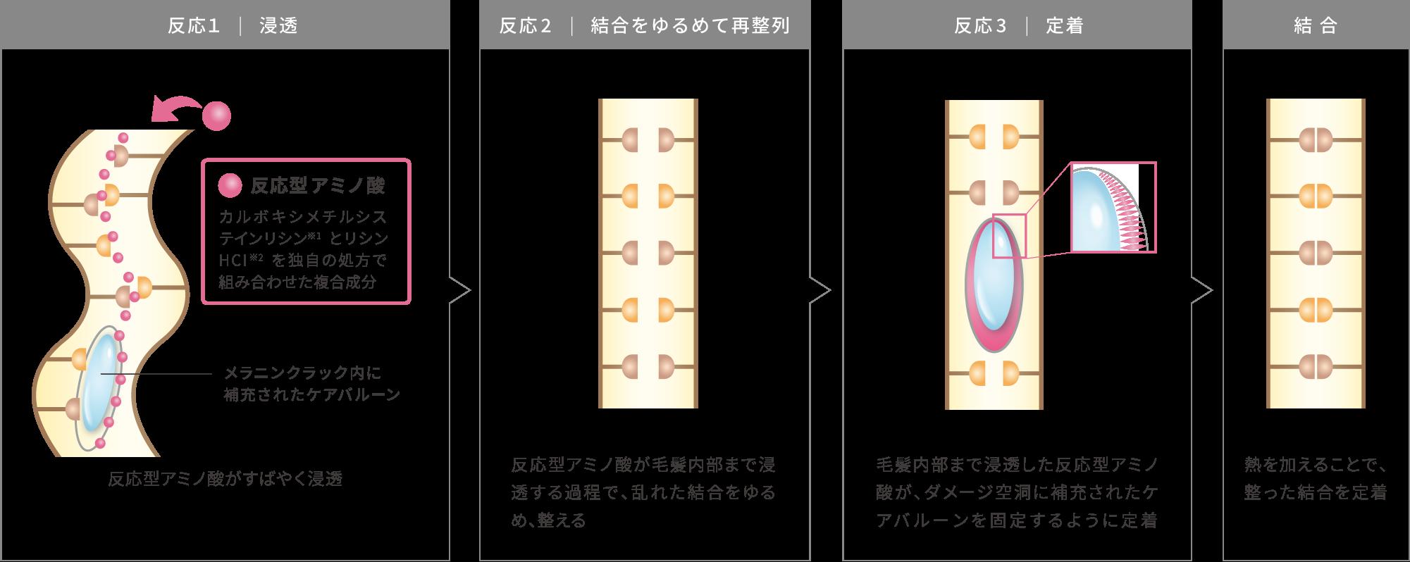 ①浸透 ②結合をゆるめて再整列 ③定着の3つを段階的に反応させることで、乱れた結合を整えるイメージ画像